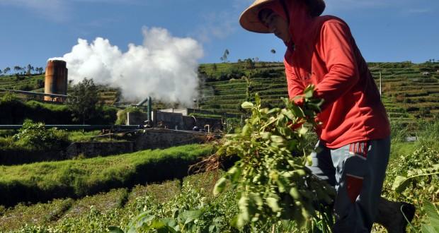 Petani merawat tanaman sayuran di perladangan sekitar sumur panas bumi (geothermal), kawasan dataran tinggi Dieng, Desa Kepakisan, Batur, Banjarnegara, Jateng Minggu (4/5)