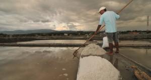 Seorang petani garam mengumpulkan garam yang telah siap panen di Penggeraman Talise, Palu, Sulawesi Utara, Selasa (27/5).