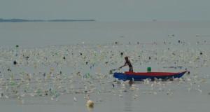 Nelayan memperbaiki posisi tali tempat mengikat bibit rumput laut  di  di Selat Sebatik  Kabupaten Nunukan
