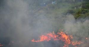 Sejumlah warga berusaha memadamkan api kebakaran ilalang di Tempat Pemakaman Umum (TPU) Kelurahan Panggung,