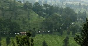 Dua minggu pasca Lebaran kunjungan wisatawan yang berlibur ke daerah Puncak masih tinggi sehingga menimbulkan kemacetan dua arah