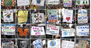 """This combination image shows protest signs being carried during the """"People's Climate March"""" down 6th Ave. in the Manhattan borough of New York"""