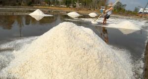 Pekerja memanen garam di pegaraman Desa Bunder, Pademawu, Pamekasan, Jatim, Selasa (14/10).