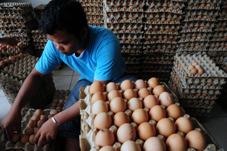 Naiknya Harga Telur Ayam Membuat Pedagang Khawatir