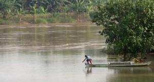 Nelayan menjala ikan di Sungai Bengawan Solo, Kelurahan Jetak, Kecamatan Kota, Kabupaten Bojonegoro, Jawa Timur, Selasa (17/3).