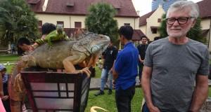 Wisatawan asing memperhatikan reptil di Benteng Rotterdam