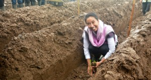 Menteri BUMN Rini Soemarno menanam bibit tebu dalam penanaman perdana tanaman tebu di Semboro, Jember, Jawa Timur, Selasa (7/4).