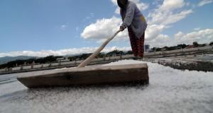 Petani memanen garam di penggaraman Talise Palu, Sulawesi Tengah, Senin (20/7). Harga garam di tingkat petani anjlok dari rata-rata Rp1.000 per kilogram menjadi Rp600 per kilogram karena banyaknya stok garam di pasar menyusul hasil panen yang melimpah. ANTARA FOTO/Basri Marzuki/ss/kye/15