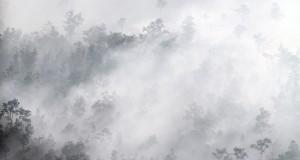 Foto udara kebakaran lahan di kawasan Tulung Selapan, Kabupaten OKI (Ogan Komering Ilir), Sumatera Selatan, Senin (27/07). Berdasarkan data yang diambil dari satelit milik BMKG melalui satelit data modis Terra Aqua terdeteksi 62 titik sebaran hot spot dan asap di Provinsi Sumatera Selatan. Pemprov Sumsel melakukan pengeboman air dari udara (water boombing) serta   menurunkan satuan gabungan untuk pemadaman kebakaran lahan melalui darat. ANTARA FOTO/Nova Wahyudi/ed/foc/15.