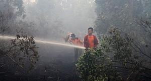 Regu pemadam Dinas Kehutanan Riau berusaha memadamkan api yang membakar lahan gambut di Rimbo Panjang, Kampar, Riau, Rabu (29/7). Jauhnya lokasi kebakaran dari sumber air dan kencangnya tiupan angin membuat petugas regu pemadam Dinas Kehutanan Provinsi Riau kewalahan memadamkan kebakaran lahan gambut tersebut. ANTARA FOTO/Rony Muharrman/ss/ama/15