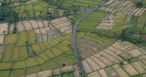 Foto udara lahan pertanian tadah hujan di wilayah Praya, Lombok Tengah, NTB, Rabu (8/7). Menurut data Dinas Pertanian Provinsi NTB mengungkapkan terdapat 30,427 hektare lahan pertanian yang terancam mengalami kekeringan memasuki musim kemarau bulan Juli hingga Agustus 2015 lahan pertanian yang berpotensi mengalami kekeringan tersebut berada di wilayah Lombok Barat dan Lombok Utara sebanyak 2.784 hektare, Lombok Tengah sebanyak 10,682 hektare serta Lombok Timur sebanyak 2.019 hektare. ANTARA FOTO/Ahmad Subaidi/ed/pd/15.