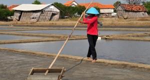 Seorang petani memadatkan tanah untuk proses pembuatan garam di tambak Desa Sawojajar, Brebes, Jawa Tengah, Selasa (28/7). Menurut petani produksi garam saat musim kemarau meningkat, dari 8 Ton per minggu menjadi 14 Ton per minggu dan harga garam Rp 450 per kilogram. ANTARA FOTO/Oky Lukmansyah/ed/ama/15