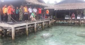 01 01 2016 Gub tinjau lokasi wisata di Karimunjawa